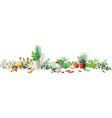 still life with garden herbs and vegetables vector image vector image