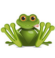 stock fat frog vector image vector image