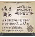 swirly alphabet vector image vector image