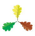 Three oak leaves vector image vector image
