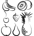 with a set of fruit vector image vector image