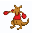 Cartoon kangaroo boxing funny collection vector image