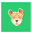 cheerful muzzle of jack russell terrier flat icon vector image