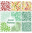 Color leaves seamless patterns set vector image vector image