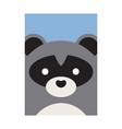 cute cartoon raccon animal vector image