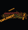 employment opportunities text background word vector image vector image