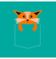 Fox in the pocket Cute cartoon character Dash line vector image vector image