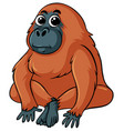 gorilla with brown fur vector image vector image