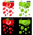 set template icon fruit strawberry and apple vector image