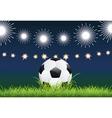 Soccer Ball and Night Stadium vector image