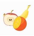 Summer fruits icon cartoon style vector image