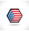 USA flag icon vector image