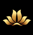 Yoga gold lotus flower vector image vector image
