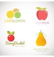 Set of logos for fruit organic company fresh vector image