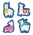 christmas llamas alpacas characters stickers vector image