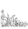 grass and flowers black silhouette isolated on vector image vector image