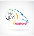 macaws parrot on white background bird icon wild vector image vector image