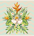 mirror summer holiday composition from tropical vector image vector image