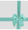 realistic turquoise bow and ribbon isolated vector image