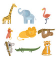 colored set of animal and birds giraffe elephant vector image
