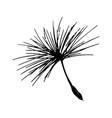 dandelion seed pencil sketch vector image vector image
