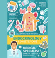 endocrinology medical poster with endocrine system vector image