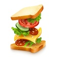 exploded view of sandwich vector image vector image