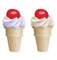 fruit icecream cones vector image