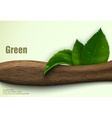green leaves of the wood vector image vector image