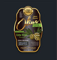 olive oil luxury background label vector image