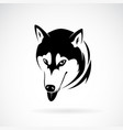 siberian husky dog head design on white vector image vector image