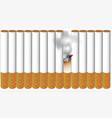 cigarettes vector image