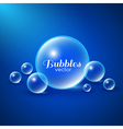 Air Bubbles Background vector image vector image