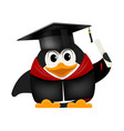 Cartoon image of a young young penguin graduate