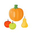 fresh orange pumpkin seasonal apple pear fruits vector image