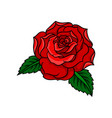 icon of beautiful bright red rose with two vector image