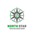 modern north star logo vector image