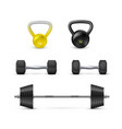 set dumbbells barbells and weight fitness and vector image