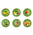 set stickers icons vegetables on a round vector image vector image