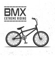 bmx bicycle for extreme riding object vector image