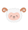 cute sheep with horns on white background vector image
