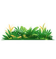 decorative composition jungle plants on ground vector image vector image