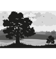 Forest Landscapes Silhouettes vector image