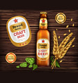 glass brown bottle with craft beer vector image vector image