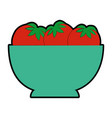 isolated tomatoes bowl vector image vector image