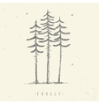 pine minimalism vector image vector image