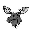 Wild moose vector image vector image