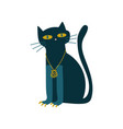 black cat witchcraft attribute vector image