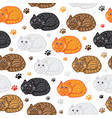 cute cats seamless pattern funny doodle vector image vector image