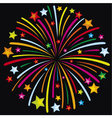 firework vector image vector image